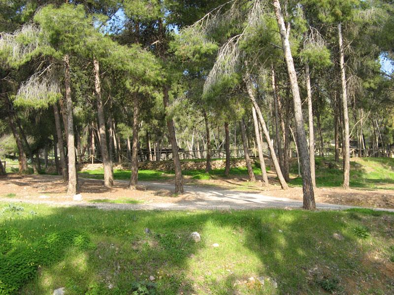 Resultado de imagen de parque periurbano de castala