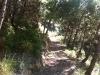 Vista del sendero